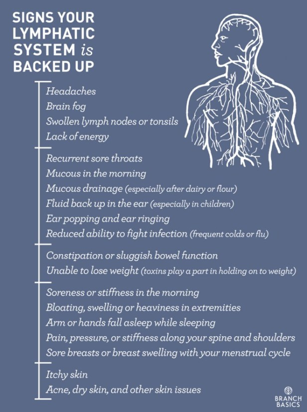 WDS drain your lymphatic system